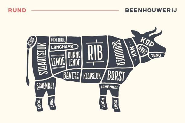 fleisch schneidet. plakat-metzger-diagramm und schema - rindfleisch - rindfleisch stock-grafiken, -clipart, -cartoons und -symbole