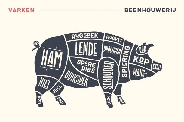 Best Pig Illustrations, Royalty-Free Vector Graphics & Clip