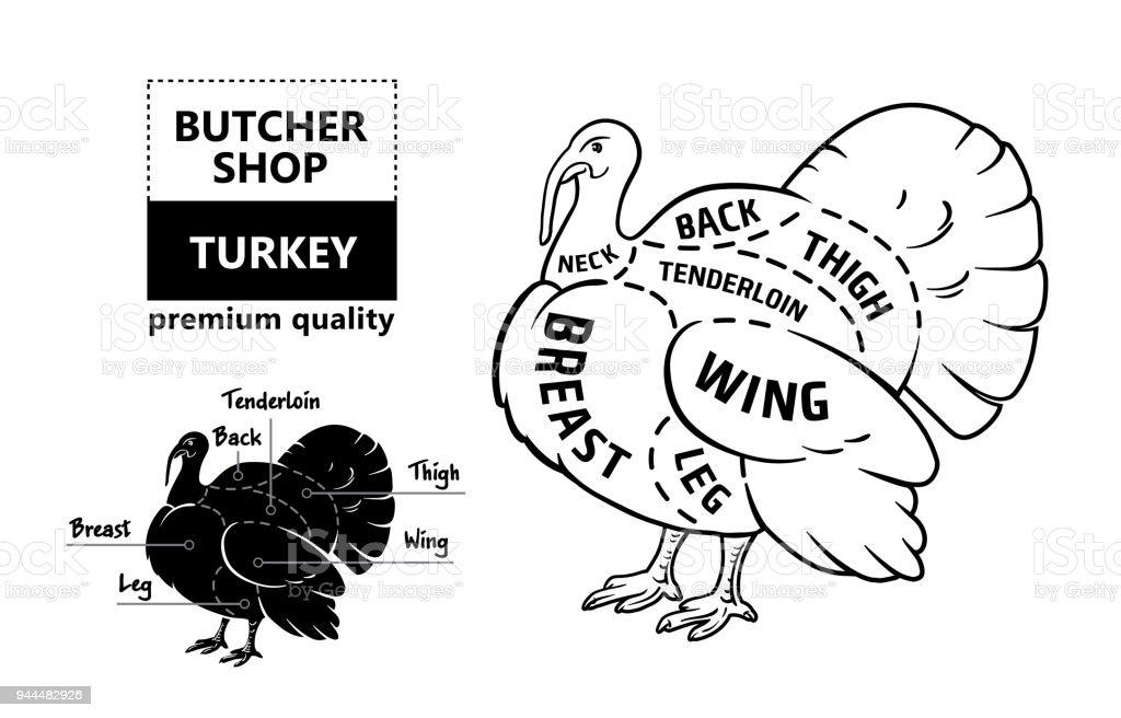 Diagram Of A Turkeys Vision - Wiring Diagram & Electricity Basics 101 •