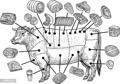 istock Meat Cuts - Raw Beef 153650031