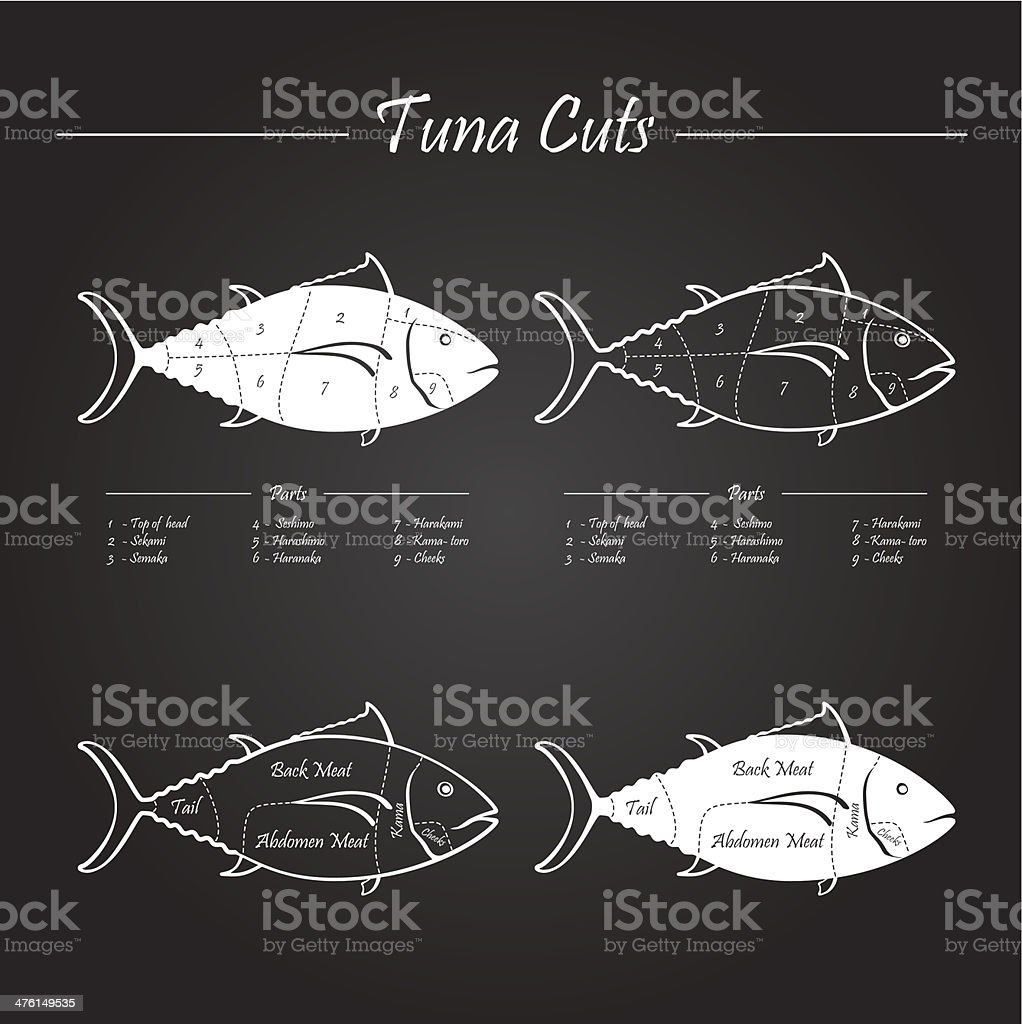 TUNA meat cuts scheme vector art illustration