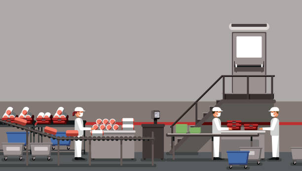 Meat factory with workers, industrial equipment, interior of the factory, social distancing, food industry vector illustration vector art illustration