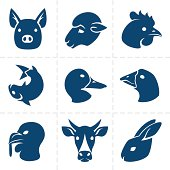Collection of nine blue vector meats icons.