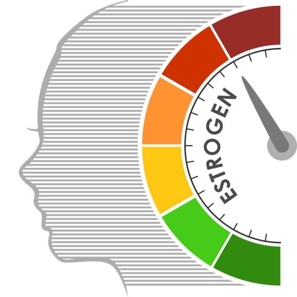 Medical background concept Hormone estrogen level measuring scale. Health care concept illustration. Head of woman silhouette. oestrogen stock illustrations