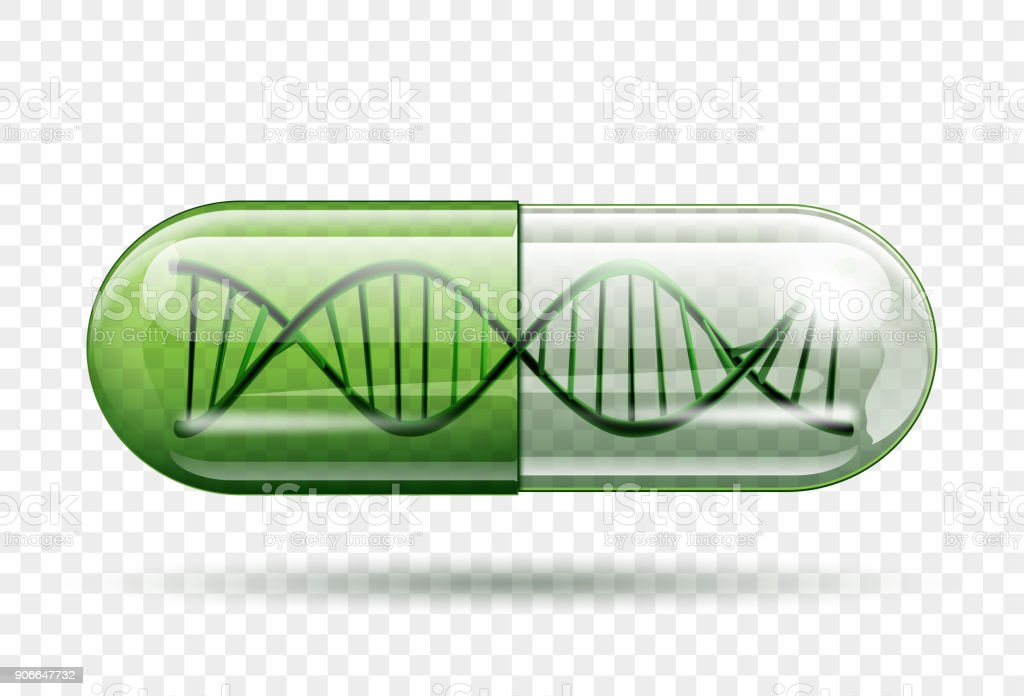 medical capsule with a DNA molecule structure inside vector art illustration