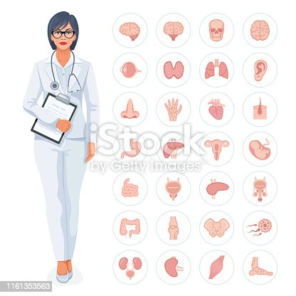 Medical concept with doctor and human internal organ icons.