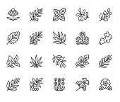 Medical herbs flat line icons. Medicinal plants echinacea, melissa, eucalyptus, goji berry, basil, ginger root, thyme, chamomile. Thin signs for herbal medicine. Pixel perfect 64x64. Editable Strokes
