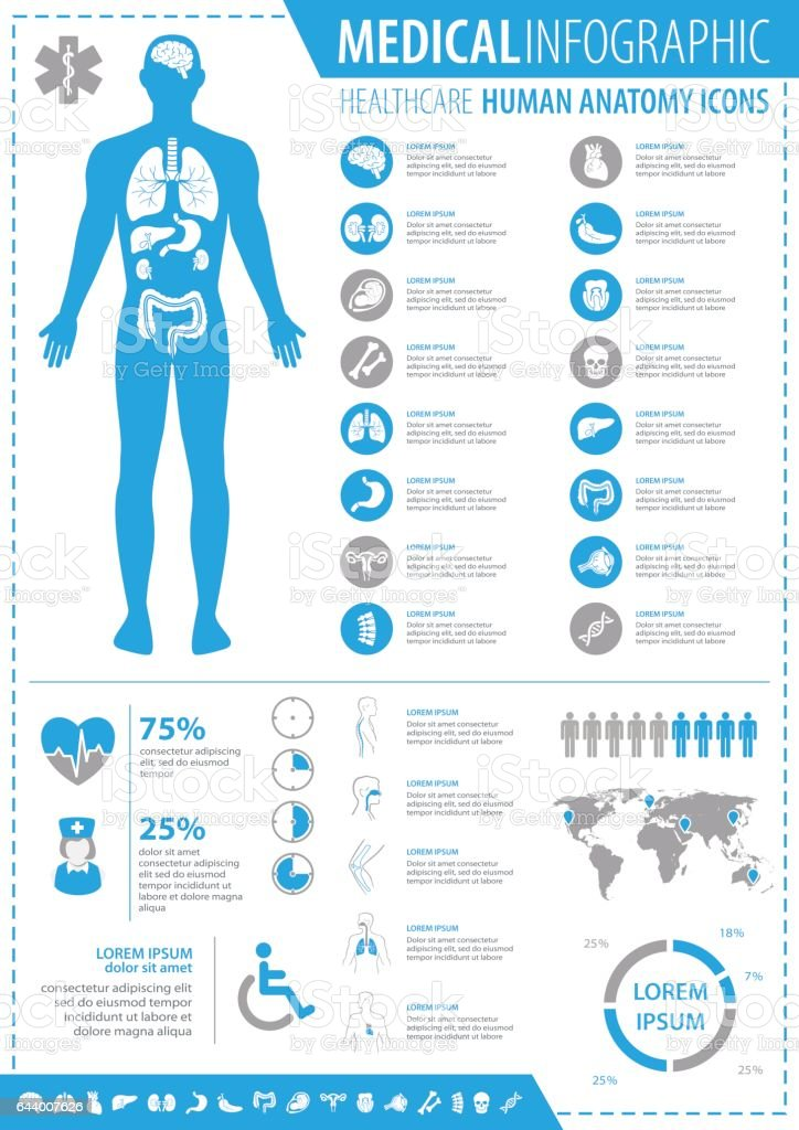 Medical Infographic vector art illustration