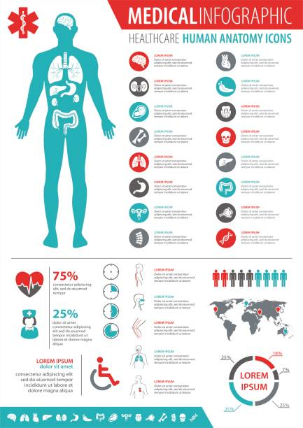 Medical Infographic Medical infographics collection, charts, symbols, graphic vector elements biomedical illustration stock illustrations