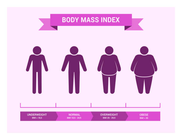 medical infographics. body mass index, obesity and overweight illustration. - talia tułów stock illustrations