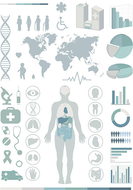 medical infographics. - autopsy stock illustrations, clip art, cartoons, & icons