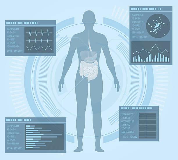 bildbanksillustrationer, clip art samt tecknat material och ikoner med medical interface, human digestive organs - helkroppsbild