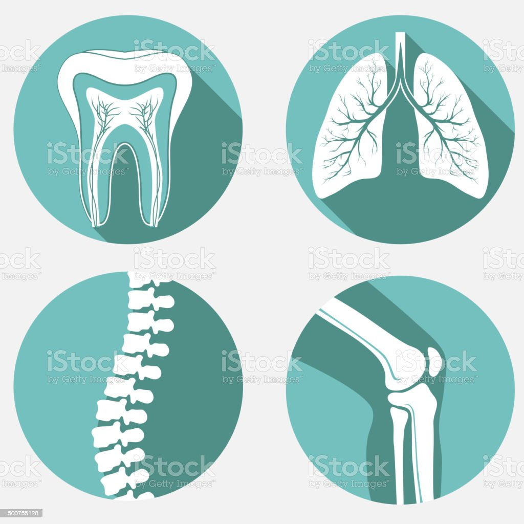 Medical labels set vector art illustration