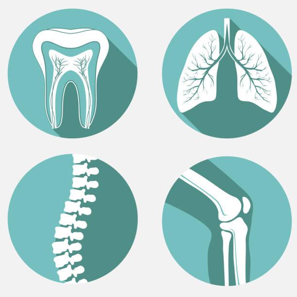 Medical labels set vector art illustration