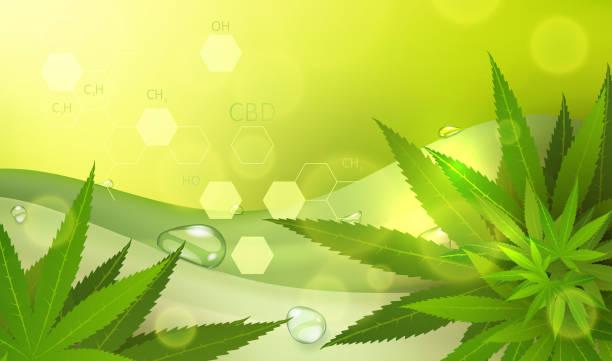 Medical marijuana concept vector art illustration