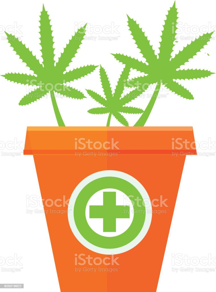 Medical Marijuana In A Pot Stock Vector Art More Images Of Canada
