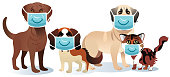 Vector Medical mask and pets