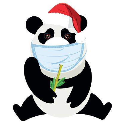 Medical Masked Panda and Santa Hat