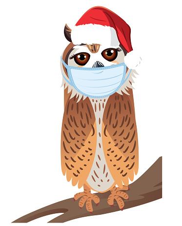 Medical Masked Striped Owl and Santa Hat