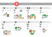Medical vitamin B, B1, B2, B3, PP, B5, B6, B7, B9, B12 source infographics. Healthy food icons set. Vector proper nutrition colorful outline elements.