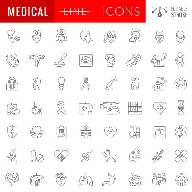 Medicale Line Icon Set. Human Internal Organs. Editable Stroke. vector art illustration