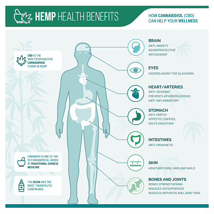 Medicinal Hemp Health Benefits Stock Illustration - Download Image Now
