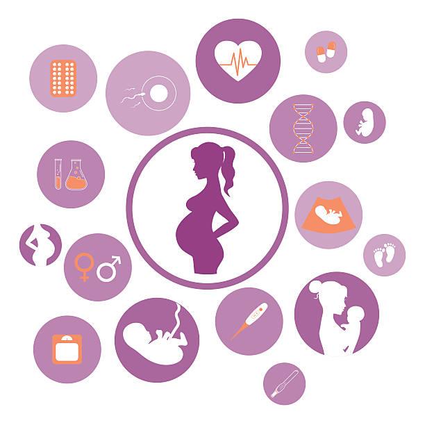 ilustraciones, imágenes clip art, dibujos animados e iconos de stock de medicina y conjunto de iconos de vector de embarazo - planificación familiar
