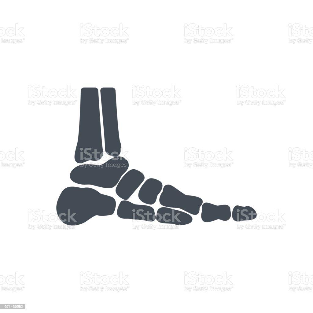 Medicine Bones Silhouette Icon Feet vector art illustration