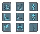 Medicine Colored Icon X-ray Bones