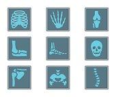 Medicine Flat Icon X-ray Bones