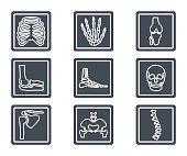 Medicine Silhouette Icon X-ray Bones