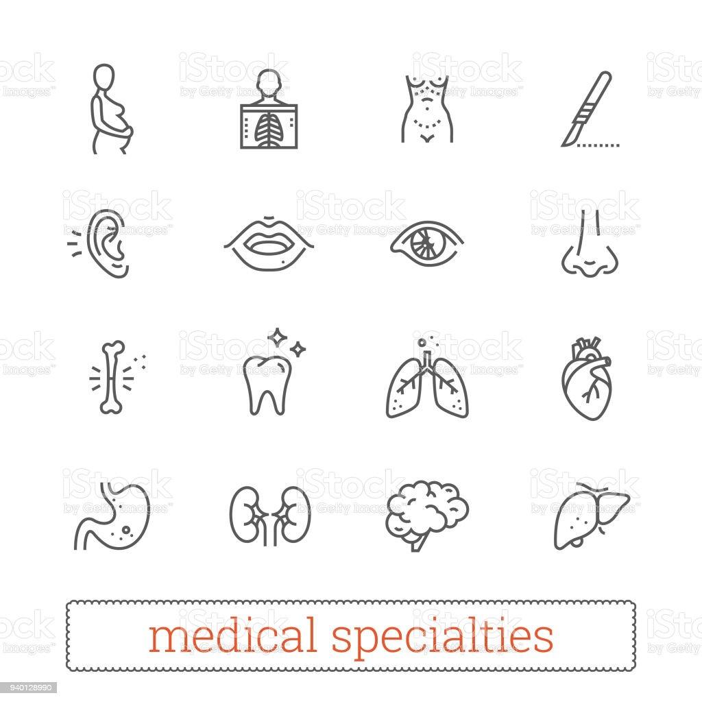 Medizinspezialitäten Vektor Organsysteme Lineare Symbole Stock ...