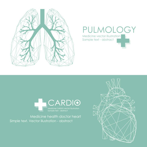 medicine. Medical care background with human heart and lungs. Medical clinic logo. lung stock illustrations