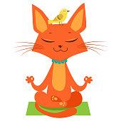 Meditating Yoga Cat Vector. Funny Cartoon Cat Practicing Yoga. Join In Yoga Session.
