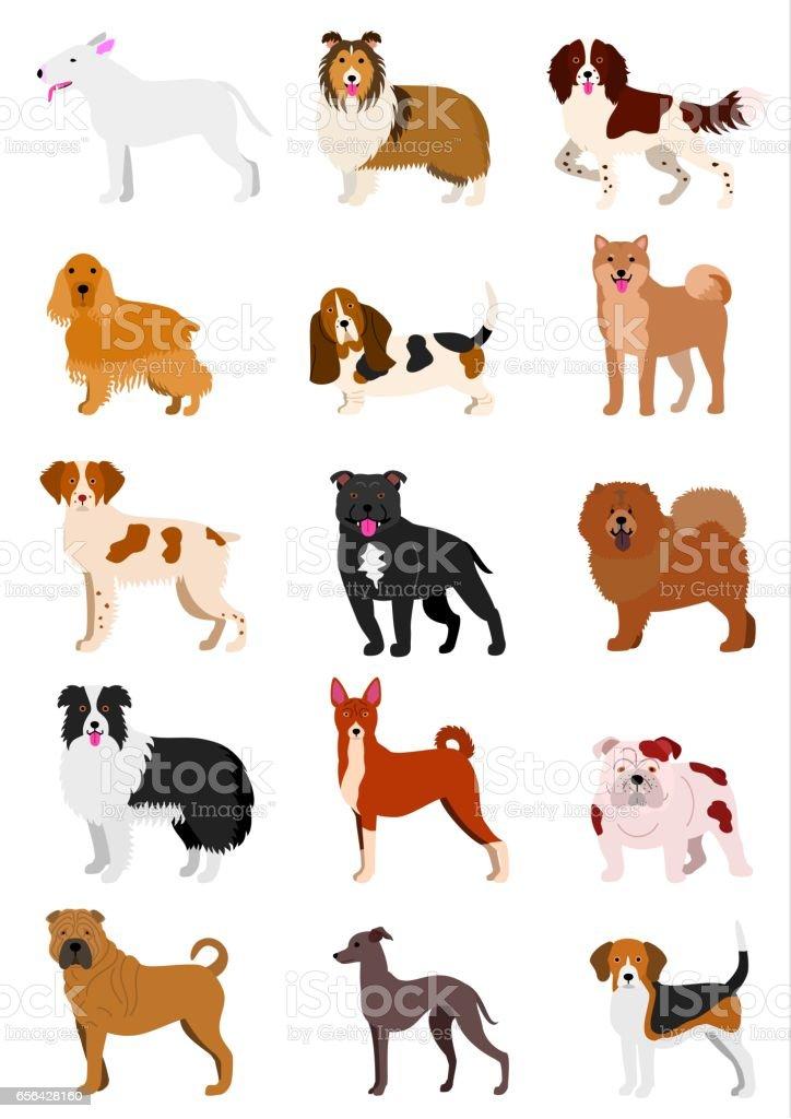 中型犬の品種 ベクターアートイラスト