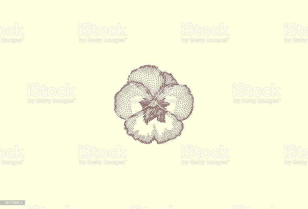 Medium viola pansy vector art illustration