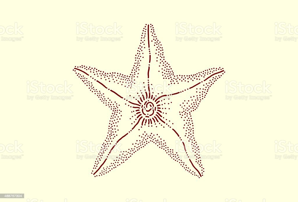 Medium zucchini flower vector art illustration