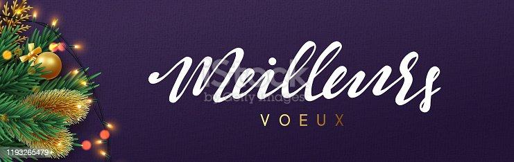 istock Meilleurs Voeux in french text. Christmas banner. Xmas festive objects of the composition. Horizontal christmas posters, cards, headers, website. 1193265479