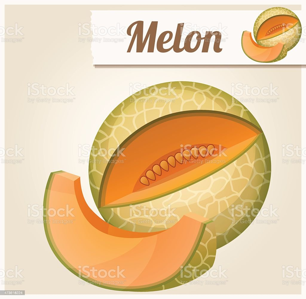 Melon. Detailed Vector Icon vector art illustration