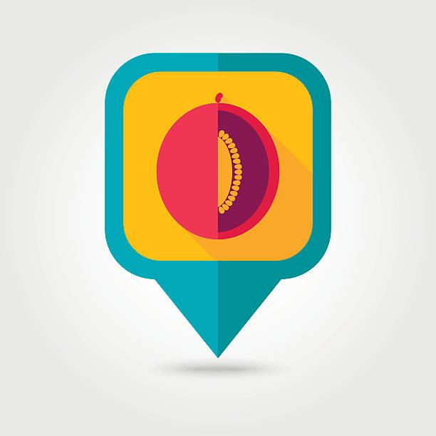 Melon flat pin map icon. Fruit vector art illustration
