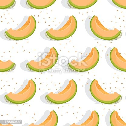 istock Melon sliced seamless pattern on white background with shadow, Fresh cantaloupe melon pattern background, Fruit vector illustration. 1178360642