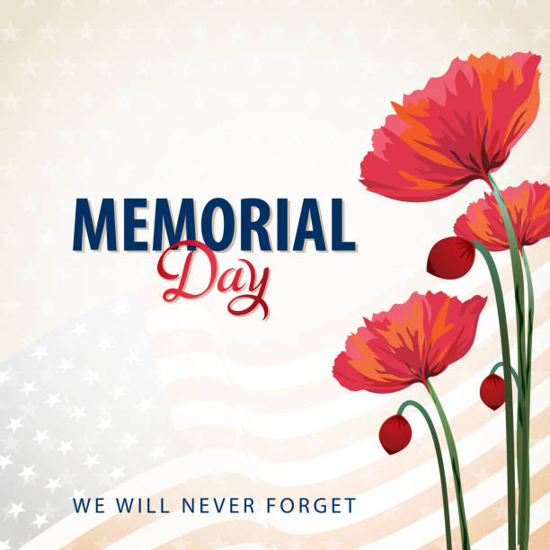 us memorial day poppies - memorial day stock illustrations