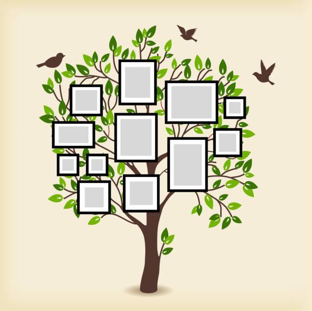 memories tree with frames - stammbäume stock-grafiken, -clipart, -cartoons und -symbole