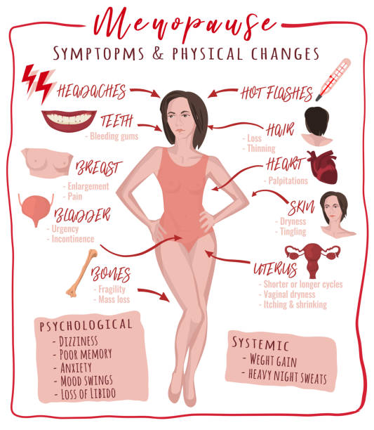 Menopause symptoms and physical changes Menopause symptoms and physical changes. Vector illustration with useful facts isolated on a white background. Scientific, educational and popular-scientific concept. Vertical poster. hormone stock illustrations