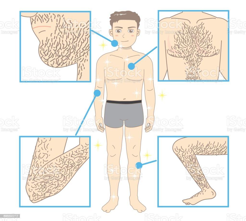 Men's Beauty depilation vector art illustration