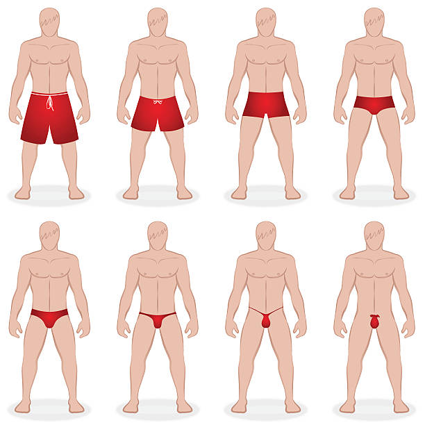 Mens Swimwear Styles Mens swimwear - different swim trunks in various styles, lengths and sizes - like bermudas, speedo, thong, g-string - Isolated vector illustration on white background. g string bikini models stock illustrations
