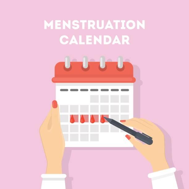 Menstruation calendar illustration. Menstruation calendar illustration. Red signs of menstrual cycle. menses stock illustrations
