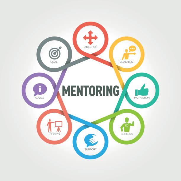 mentoring infographic with 8 steps, parts, options - autorytet stock illustrations