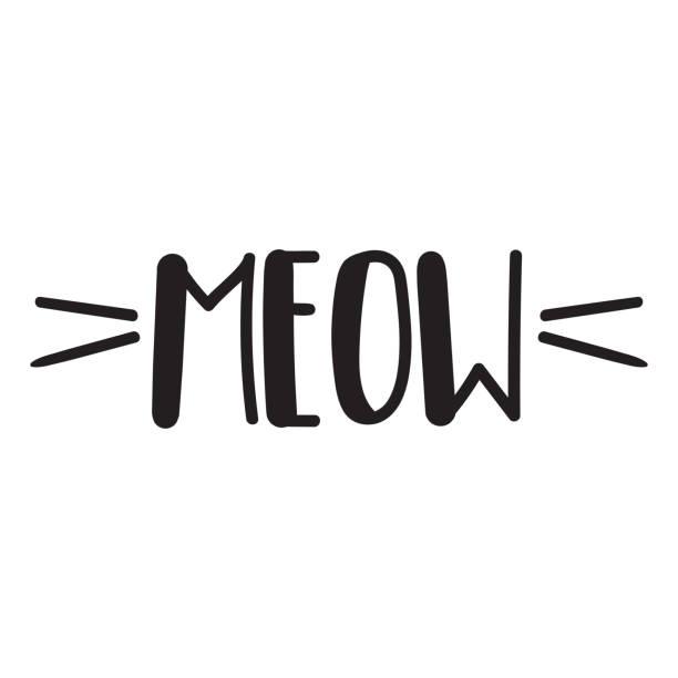 stockillustraties, clipart, cartoons en iconen met miauw. vector illustratie op een witte achtergrond voor afdrukontwerp belettering. - miauwen
