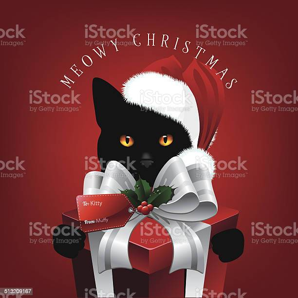 Meowy christmas cat with big gift vector id513209167?b=1&k=6&m=513209167&s=612x612&h=bvnrqo1koao b8kjzntmr0x3hrakn e3hr2qg3amwti=